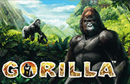 Игровой аппарат Gorilla на деньги