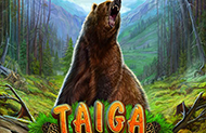 Taiga